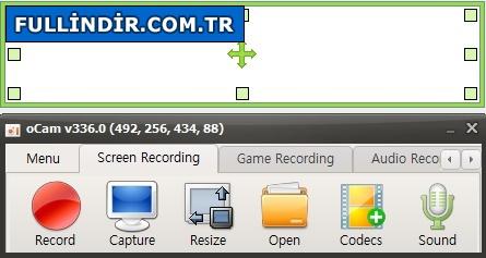Ekran görüntüsü kaydetme programı Resim #2